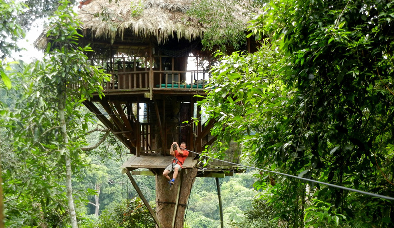 Tourism Experience: Ecotourism And Wild Holiday Taste In Bokeo Laos