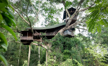 Sleeping in a Treehouse in Houayxay Laos