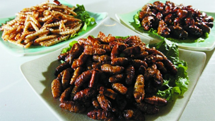 Dishes from Insects in Laos Food