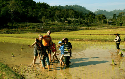 Experience Laos farmer life (Source: Homestay Laos)