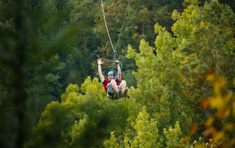 Zipline - Top Laos Wildlife Tours to Know!