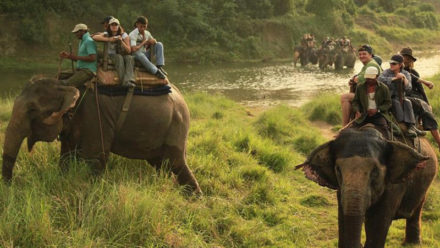 Travel Guide for Laos Wildlife Tours