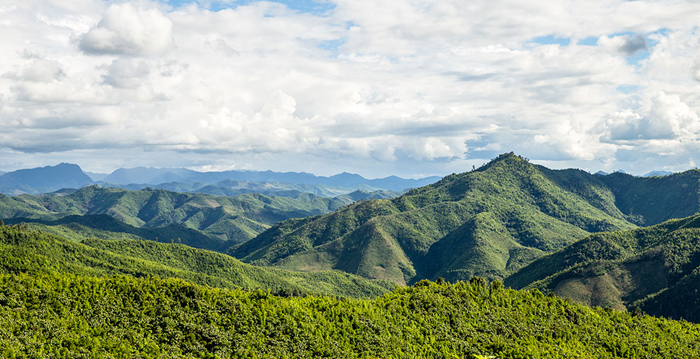 Nam Et-Phou Louey National Protected Area in Laos